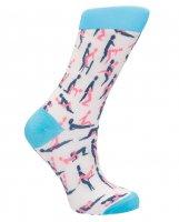Shots Sexy Socks Sutra Socks - Female
