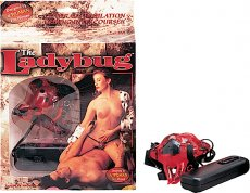 LADY BUG-RED