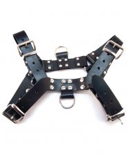 Rouge Over the Head Large Harness