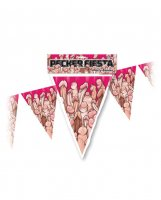 PECKER FIESTA PARTY BANNER