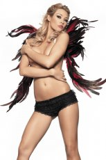 FEATHER WING 28INX32IN BLACK & RED